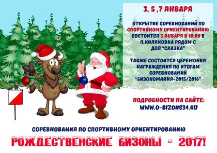 03, 05 и 07 января. Рождественские БИЗОНЫ-2017. Итоги
